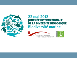 Mercredi 22 mai : Journée internationale de la biodiversité