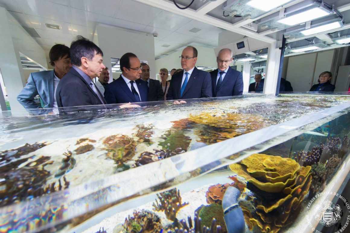 Visite de fran ois hollande monaco les photos news for Visite dans le 78